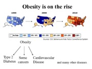 Lecture 11 12 Obesity Insulin Resistance