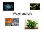 3 Water and Life 1