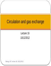 Lecture 16- Circulation and gas exchange