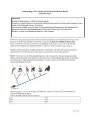 Lab_Essay_2-Primates_Comparative_Anatomy-ANTH_170C_SS-REVISED_5_2016KAM-UPLOAD.docx