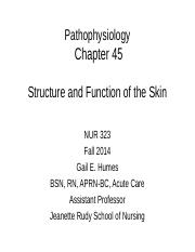 NUR323chapter45STUDENTCOPY-2.ppt