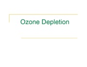 OzoneDepletion