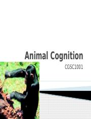 Lecture 19- Animal Cognition