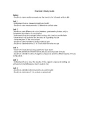Practical 1 Study Guide