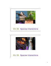 53 Species Interactions slides