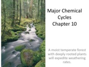 Ch10_Chemical Cycles-part II