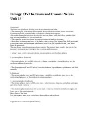 Biology 235 The Brain and Cranial Nerves Unit 14.docx
