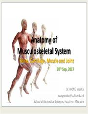 SBMS1431 Anatomy of musculoskeletal System II (1718 student version with all answers).pdf