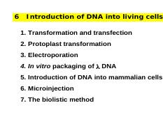Biology weaver molecular pdf robert
