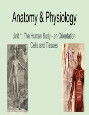 Anatomy & Physiology Unit 1