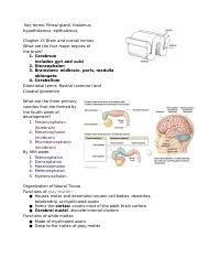 Anat1Chapter15BrainandCranialNerves