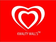 kwalitywalls marketing plan in India (Presentation)