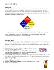 Lab 1 - Lab safety section.doc