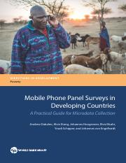 Mobile Phone Panel Surveys in Developing Countries
