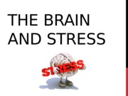 Stress and the Brain