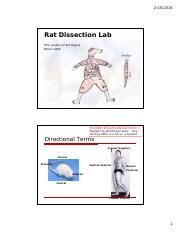 FOR STUDENT UPLOAD Rat Dissection - TA + UA presentation - updated 2-4-16.pdf