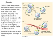 Chapter 7 Signaling (1).ppt