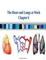 PPT CH 6 Heart and Lungs 1.ppt