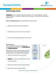 Aerobic respiration respiration that takes place in the ...