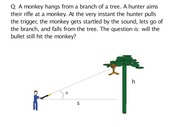 Can the bullet hit the monkey or not(1)