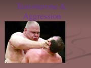 Testosterone & Aggression 2012