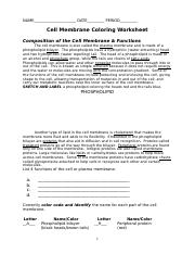 cell membrane coloring worksheet-2011 - NAME DATE PERIOD ...
