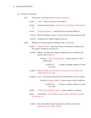 Final Exam Study Guide Hearing and Vision (2)