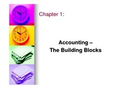chapter1_AccountingTheBuildingBlocks
