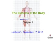 Lecture 2 - Systems of the Body
