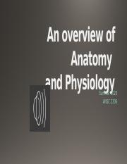 lect 1  An overview of Anatomy.pptm