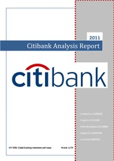 Citibank_Analysis_Report