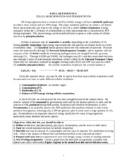 bio lab essay k101