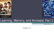 Learning, memory, and amnesia part 3-1-1