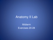 Midterm_Review ap 2 lab ppt