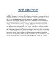 FACTS ABOUT PIGS.docx