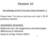 WEB Session 10 Neurobiology of PTSD 2