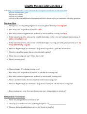 Snurfle Meiosis and Genetics 2 Worksheet (1) - Snurfle ...