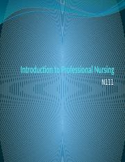 Introduction to Professional Nursing