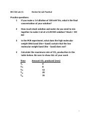 Lab11-Lab Practical Review(1)