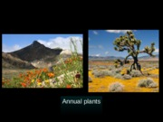 Lect12_Spring_2014_selected_slides.ppt