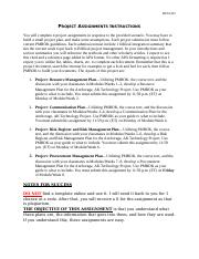 BUSI415_Project_Assignments_Instructions .docx