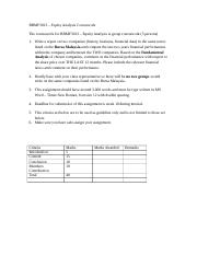 BBMF3013 Equity Analysis(Assignment)