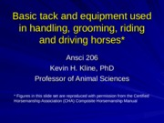 Ansci 206Tack and equipment0 (1)