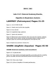 BIO 3361 LAB EXAM II STUDY GUIDE