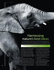 sustainable development Harnessing_nature_s_best_ideas.pdf