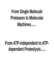 Proteolysis209 (2).ppt
