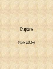 Chapter 6 - New.ppt