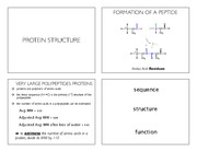 Lecture_5_Peptides