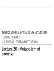 20 - Exercise and Metabolism