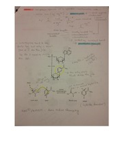 cofactor and inhibition